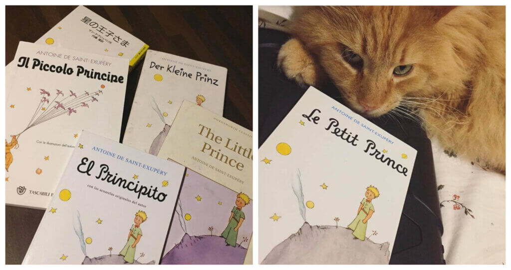 Best Bedtime Books For Techie Kids: The Little Prince